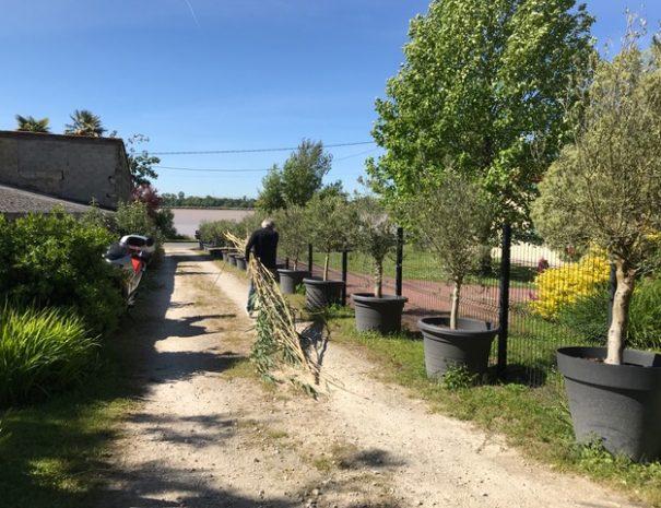La Dordogne en face